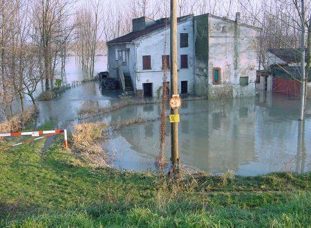 Piena 2002